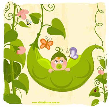 Bebés en Vainas Guisantes | Sweet Peas