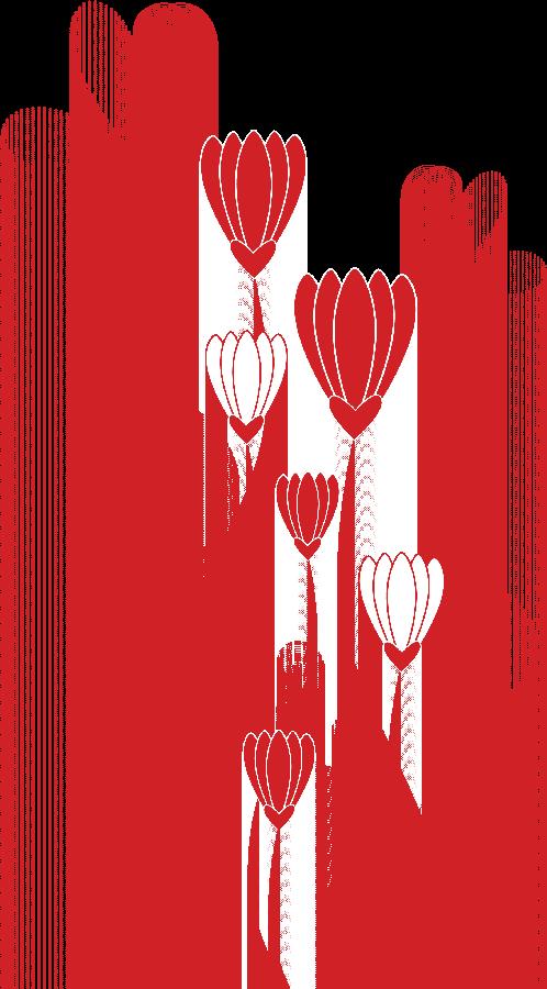 Espigas Decorativas Dibujo