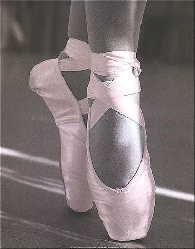 En puntas y a volar - Página 5 Ballerina-30